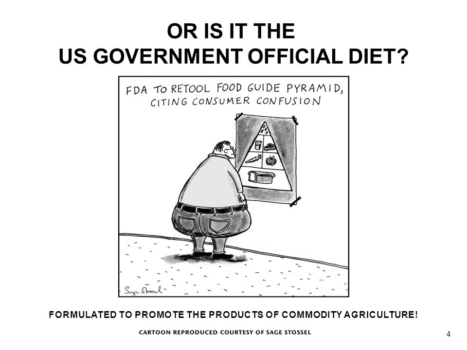 Cartoon OR IS IT THE US GOVERNMENT OFFICIAL DIET? FORMULATED TO PROMOTE THE PRODUCTS OF COMMODITY AGRICULTURE! 4