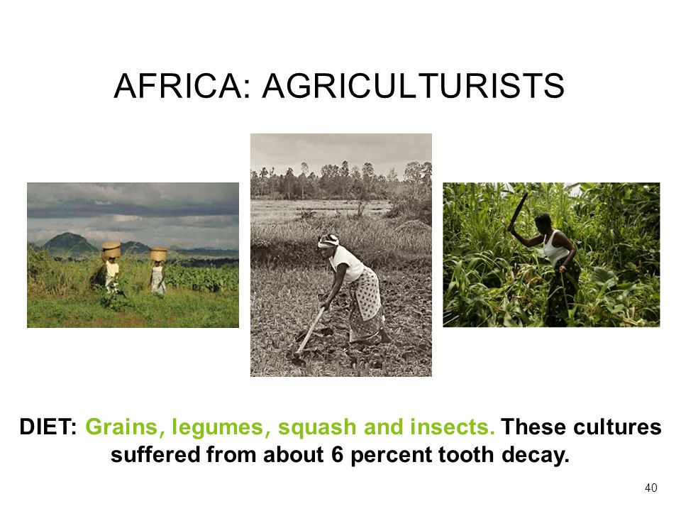 AFRICA: AGRICULTURISTS DIET: Grains, legumes, squash and insects. These cultures suffered from about 6 percent tooth decay. 40