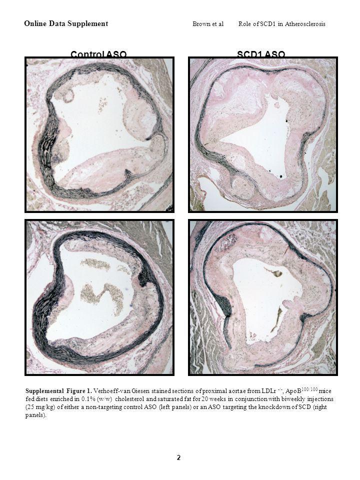 AB SFA MUFA Diet Diet Control ASO SCD1 ASO TG (mg/g protein) CE (mg/g protein) FC (mg/g protein) PL (mg/g protein) a C MUFA (%) SFA (%) Cholesteryl Ester Triglyceride Phospholipid c Secretion Rate ( g / min / g liver) D a c b a c a b b b a a a a b d a c ab b bc c a ab SFA MUFA Diet Diet E FAS ACC1 mGPAT mRNA Levels (AU) synthase HMG-CoA Cyp7 1 ABCG5 F Control ASO SCD1 ASO SCD1 SREBP1c ACC1/2 p-AMPK ACAT2 ABCG5 SFA MUFA Diet Diet SFA MUFA Diet Diet b b b a a a a Supplemental Figure 2.