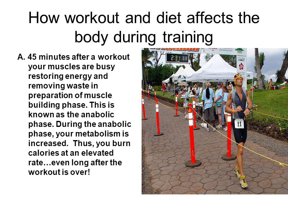 How workout and diet affects the body during training A.