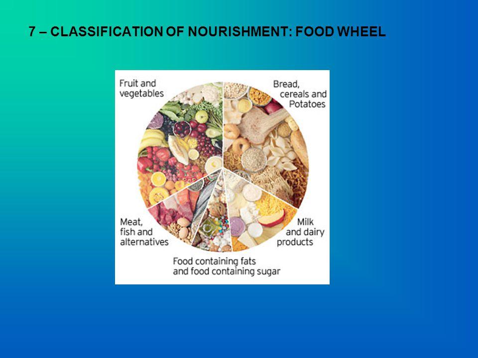 7 – CLASSIFICATION OF NOURISHMENT: FOOD WHEEL