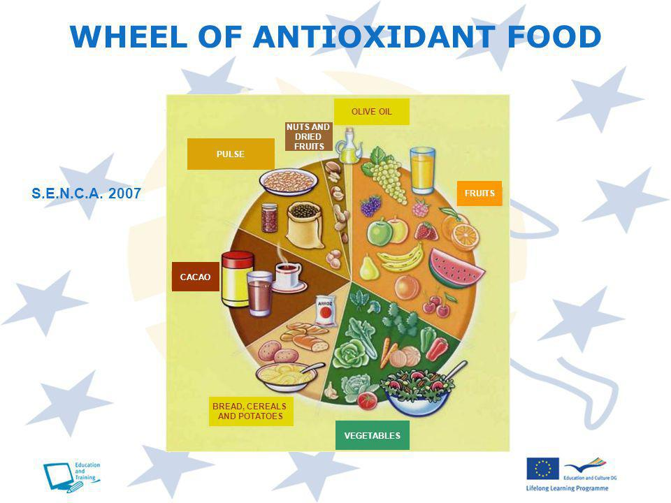 WHEEL OF ANTIOXIDANT FOOD VEGETABLES BREAD, CEREALS AND POTATOES CACAO PULSE NUTS AND DRIED FRUITS OLIVE OIL FRUITS S.E.N.C.A.