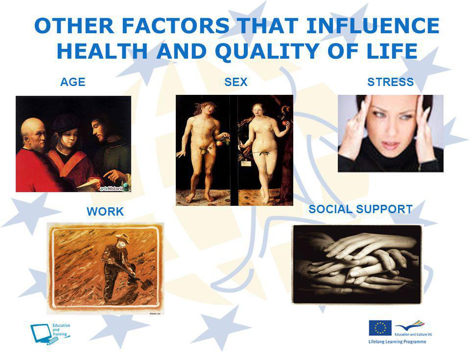 OTHER FACTORS THAT INFLUENCE HEALTH AND QUALITY OF LIFE AGE SEXSTRESS WORK SOCIAL SUPPORT