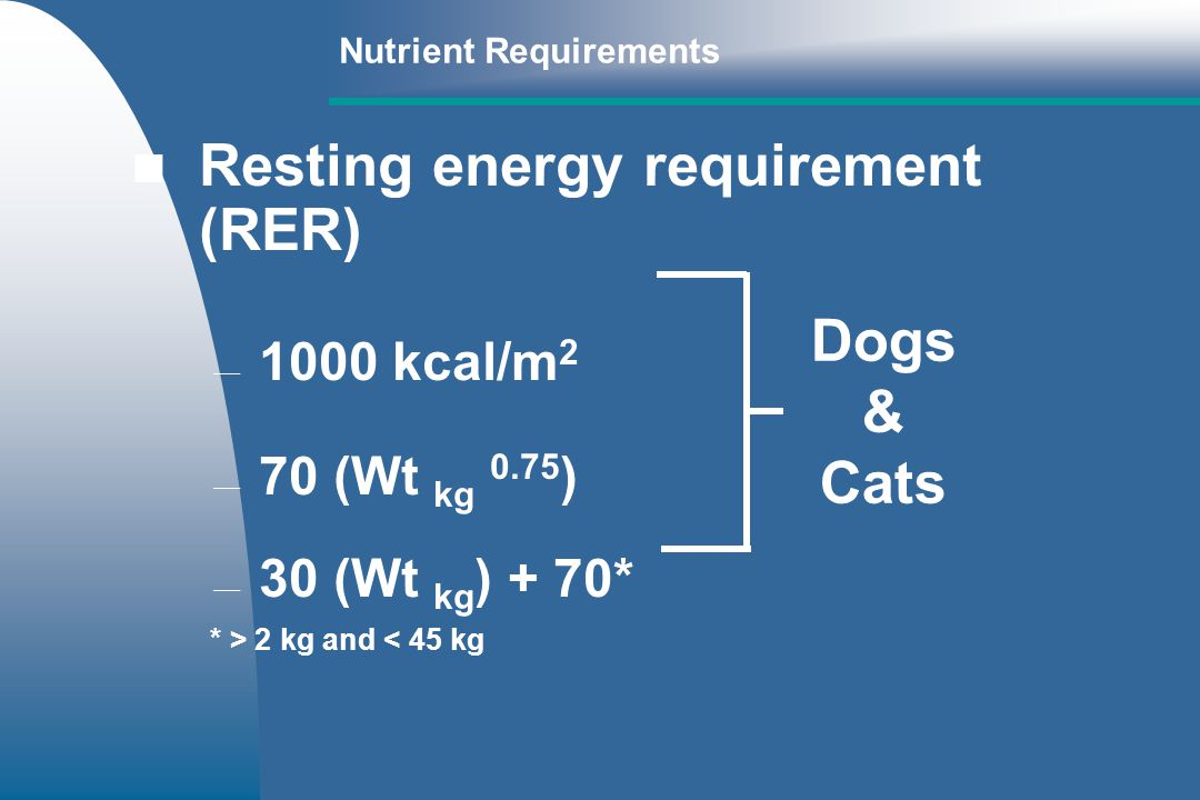 Resting energy requirement (RER) 1000 kcal/m 2 70 (Wt kg 0.75 ) 30 (Wt kg ) + 70* * > 2 kg and < 45 kg Dogs & Cats