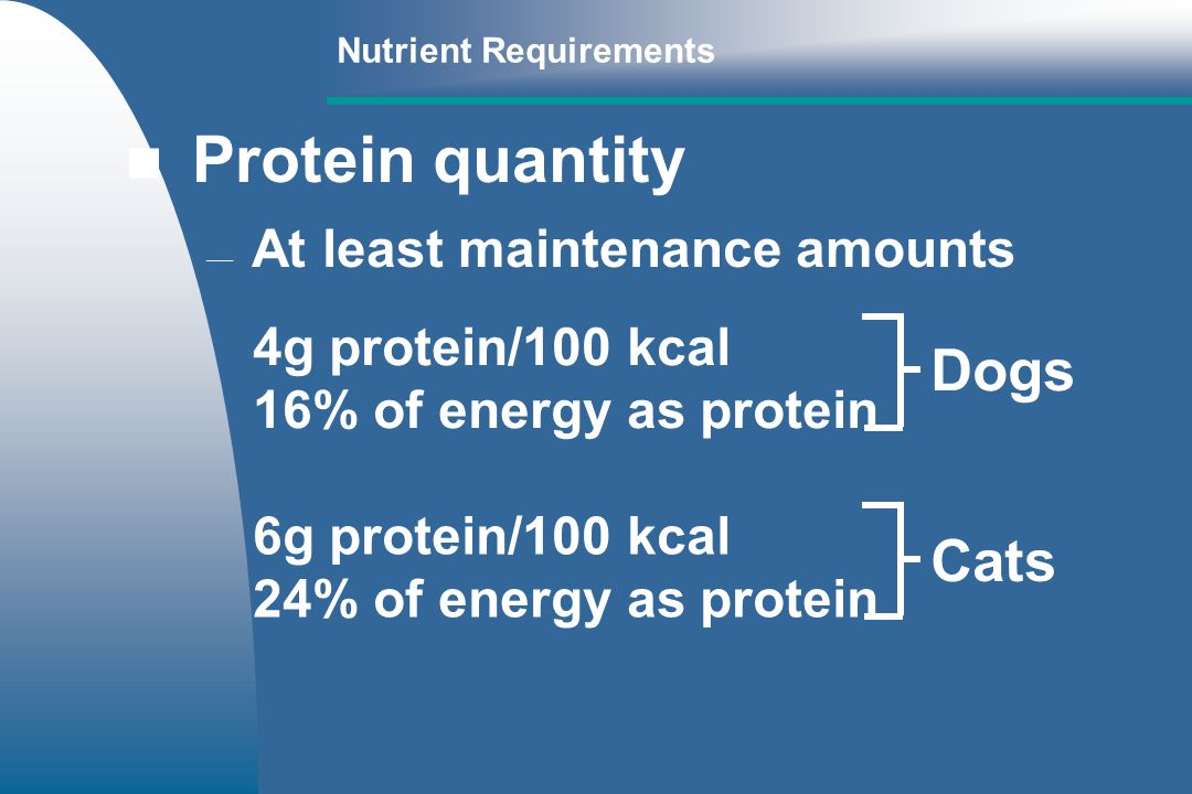 Nutrient Requirements Protein quantity At least maintenance amounts 4g protein/100 kcal 16% of energy as protein 6g protein/100 kcal 24% of energy as protein Dogs Cats