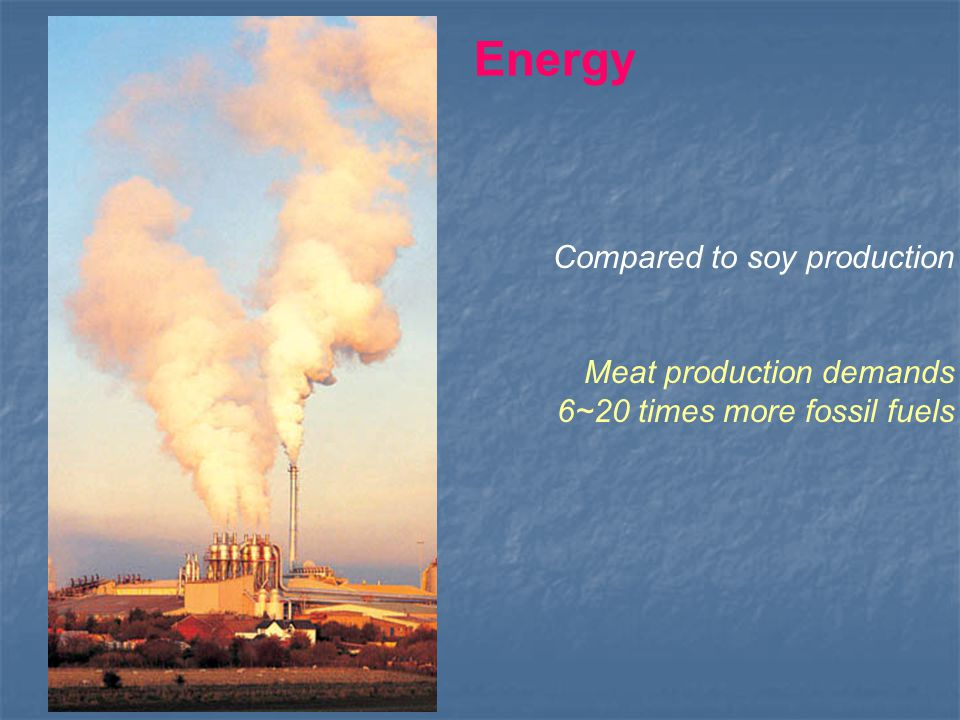 Compared to soy production Meat production demands 6~20 times more fossil fuels Energy