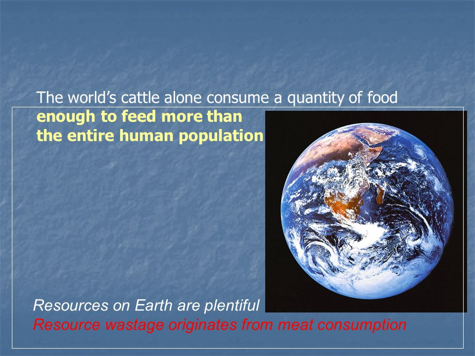 The worlds cattle alone consume a quantity of food enough to feed more than the entire human population Resources on Earth are plentiful Resource wastage originates from meat consumption