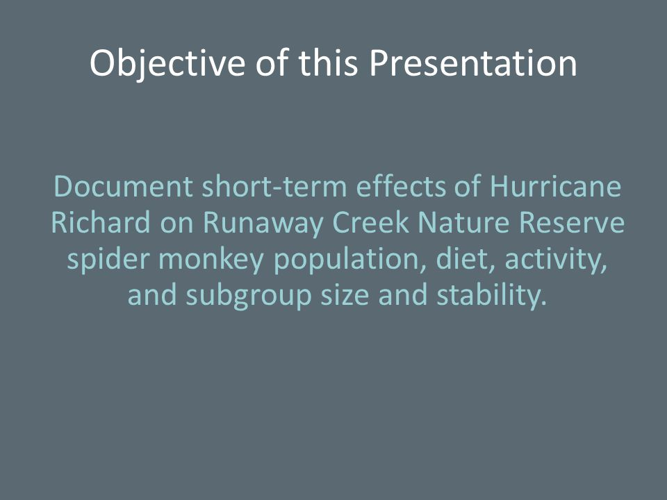 Objective of this Presentation Document short-term effects of Hurricane Richard on Runaway Creek Nature Reserve spider monkey population, diet, activity, and subgroup size and stability.