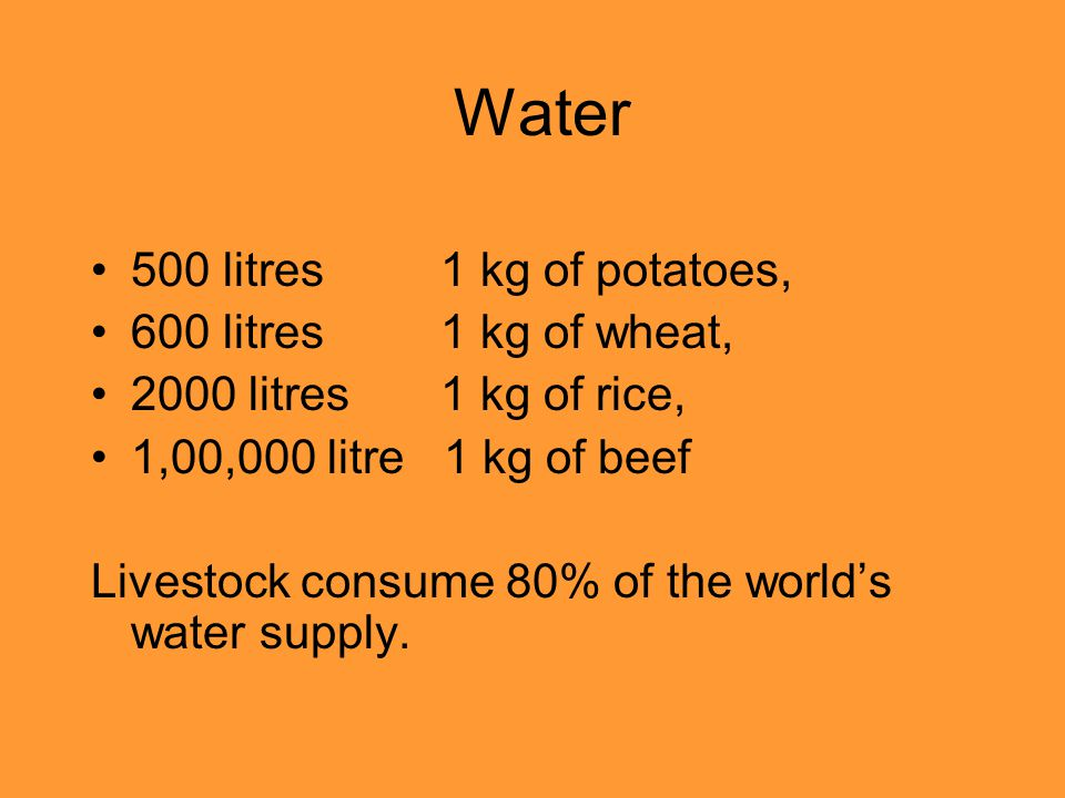 Water 500 litres 1 kg of potatoes, 600 litres 1 kg of wheat, 2000 litres 1 kg of rice, 1,00,000 litre 1 kg of beef Livestock consume 80% of the worlds
