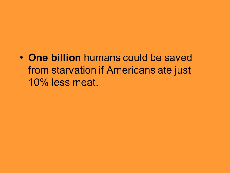 One billion humans could be saved from starvation if Americans ate just 10% less meat.