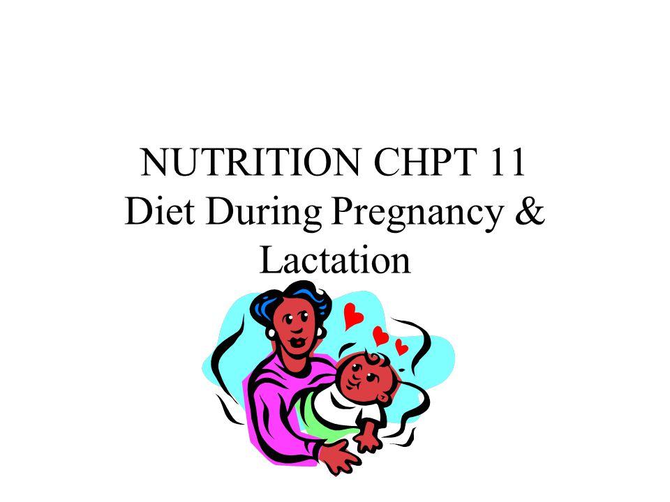 NUTRITION CHPT 11 Diet During Pregnancy & Lactation