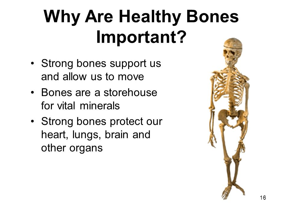 16 Why Are Healthy Bones Important.