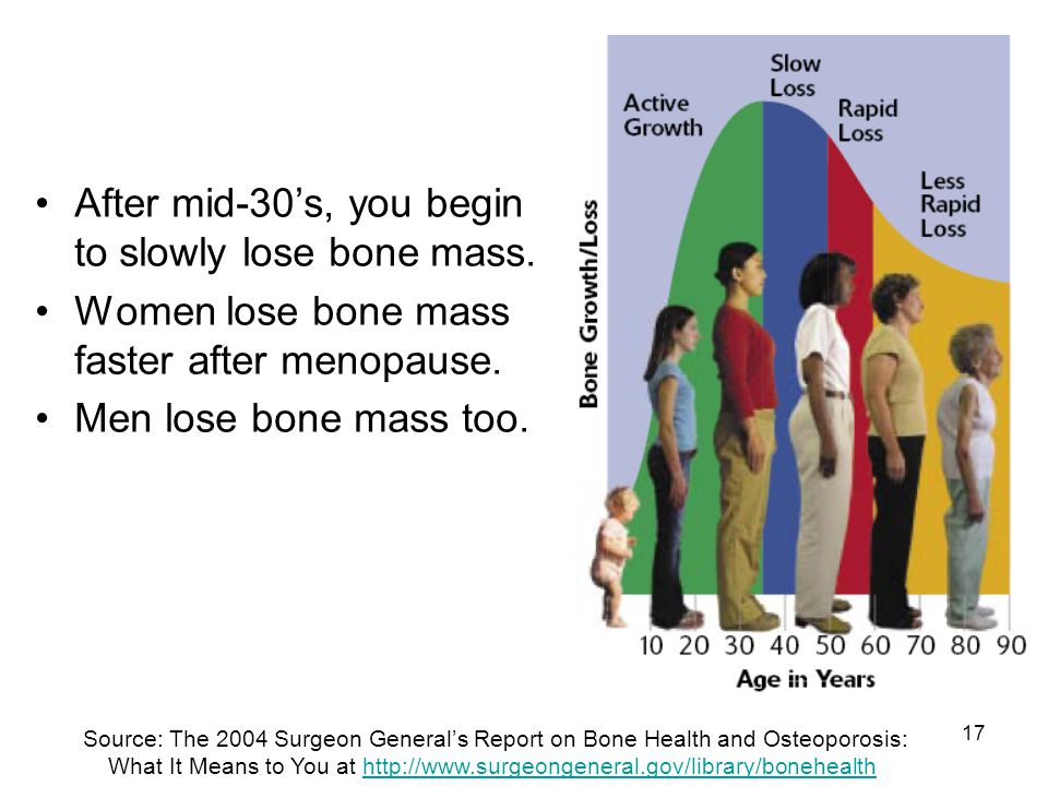 17 After mid-30s, you begin to slowly lose bone mass. Women lose bone mass faster after menopause. Men lose bone mass too. Source: The 2004 Surgeon Ge