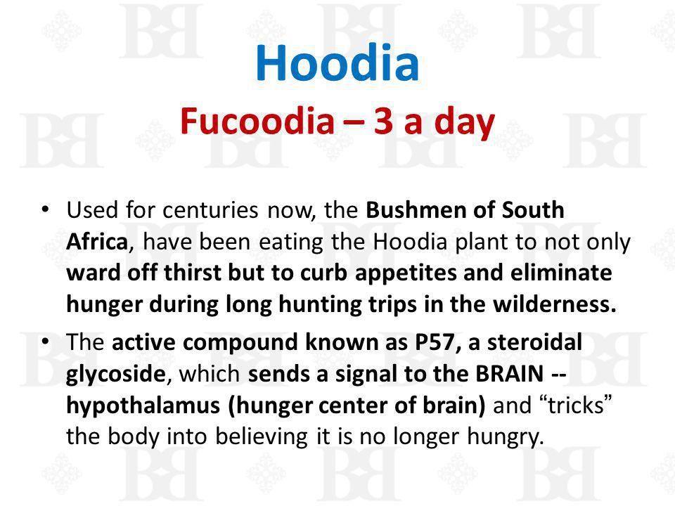 Hoodia Fucoodia – 3 a day Used for centuries now, the Bushmen of South Africa, have been eating the Hoodia plant to not only ward off thirst but to cu