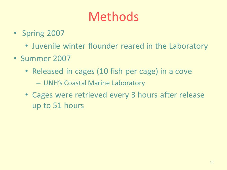 13 Methods Spring 2007 Juvenile winter flounder reared in the Laboratory Summer 2007 Released in cages (10 fish per cage) in a cove – UNHs Coastal Mar