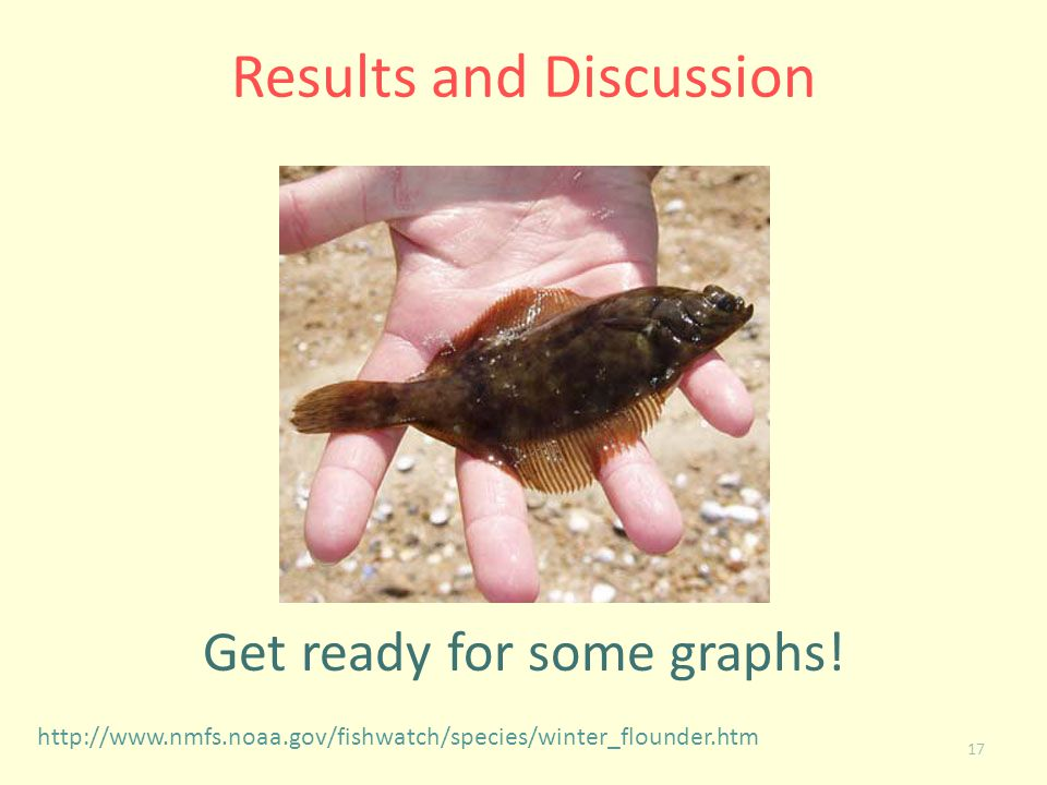 17 Results and Discussion Get ready for some graphs! http://www.nmfs.noaa.gov/fishwatch/species/winter_flounder.htm