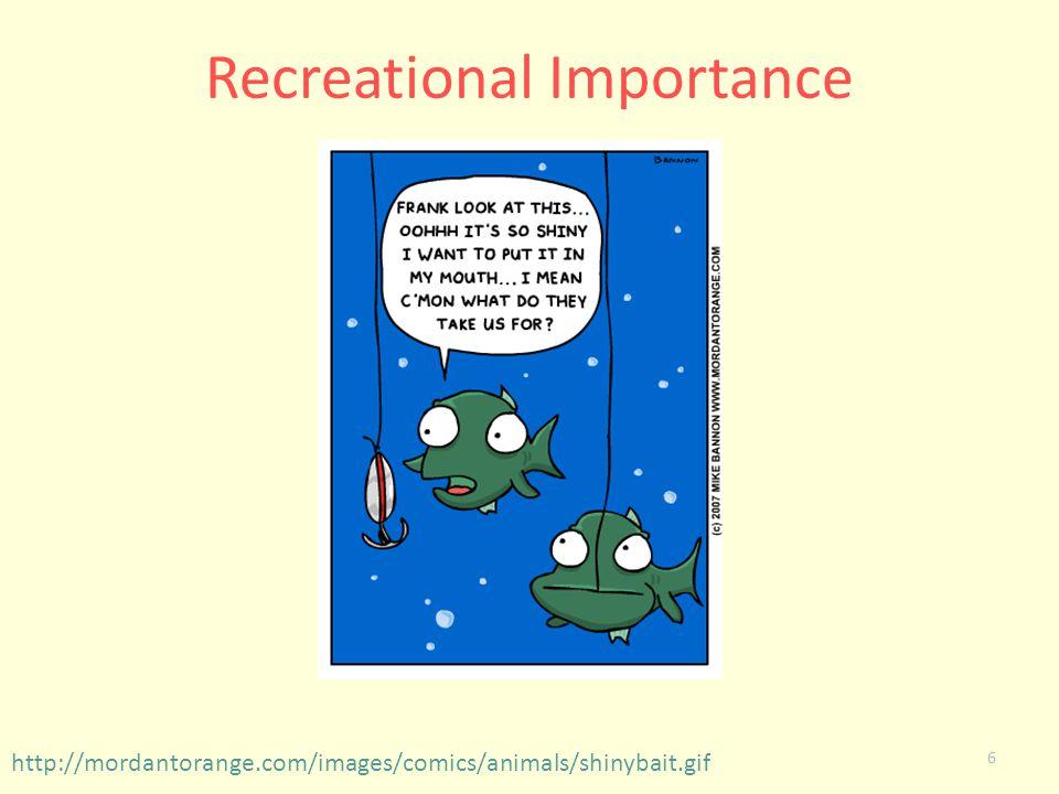 6 Recreational Importance http://mordantorange.com/images/comics/animals/shinybait.gif