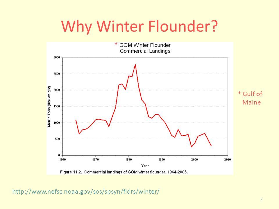 Why Winter Flounder? 7 http://www.nefsc.noaa.gov/sos/spsyn/fldrs/winter/ * * Gulf of Maine