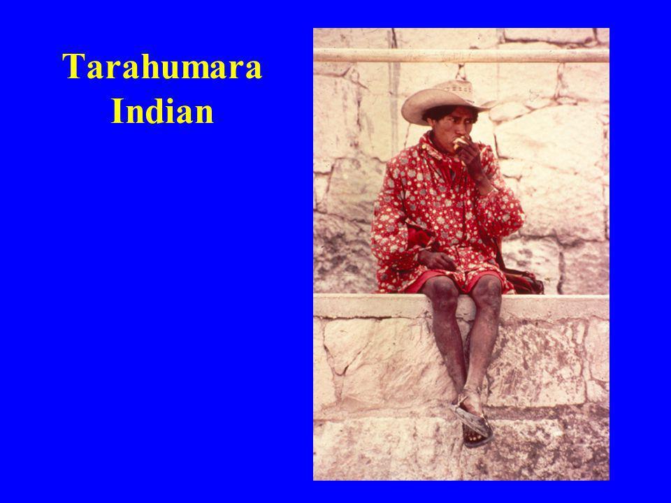 Tarahumara Indian