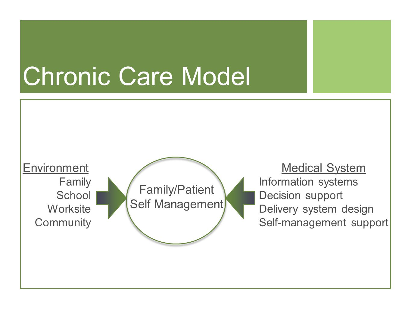 Chronic Care Model Family/Patient Self Management Environment Family School Worksite Community Medical System Information systems Decision support Delivery system design Self-management support