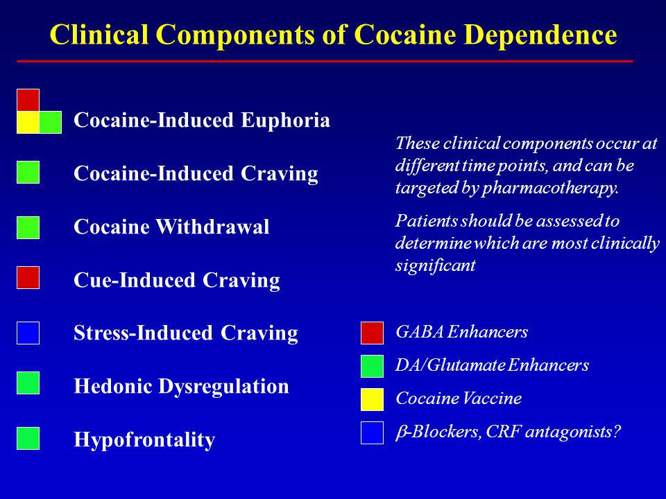 Clinical Components of Cocaine Dependence Cocaine-Induced Euphoria Cocaine-Induced Craving Cocaine Withdrawal Cue-Induced Craving Stress-Induced Craving Hedonic Dysregulation Hypofrontality These clinical components occur at different time points, and can be targeted by pharmacotherapy.