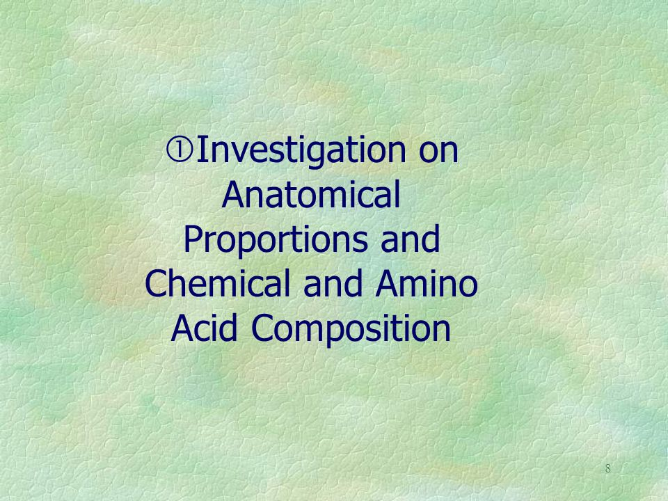 8 Investigation on Anatomical Proportions and Chemical and Amino Acid Composition