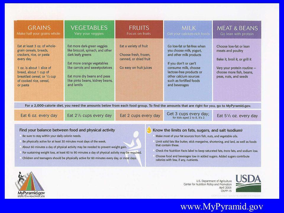 www.MyPyramid.gov
