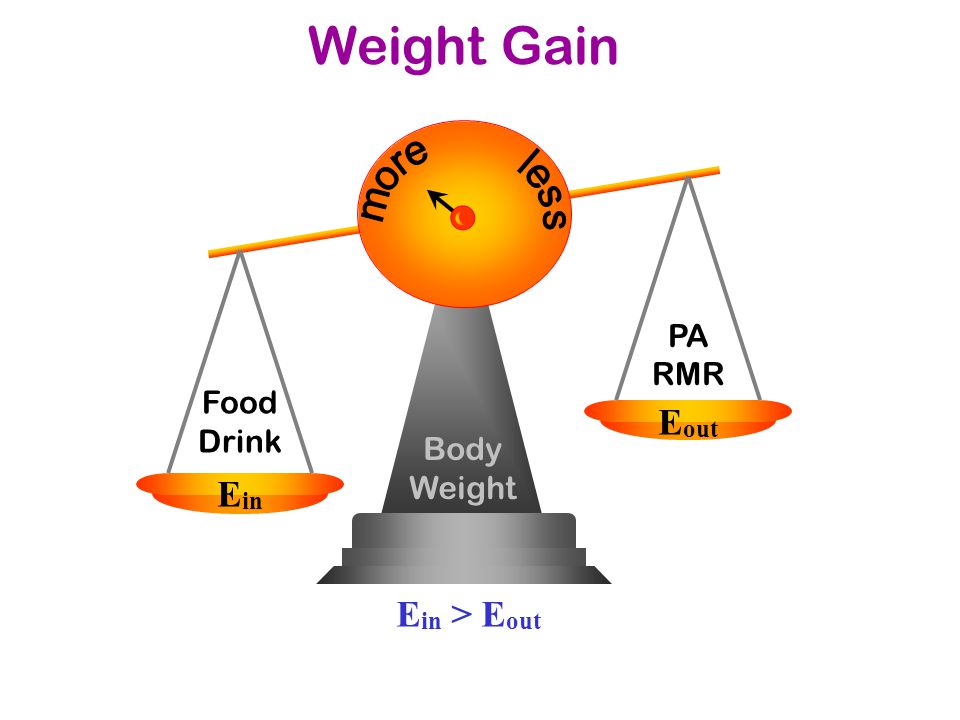 Body Weight Food Drink E in E out PA RMR Weight Gain E in > E out