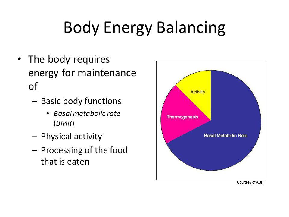 Body Energy Balancing The body requires energy for maintenance of – Basic body functions Basal metabolic rate (BMR) – Physical activity – Processing of the food that is eaten