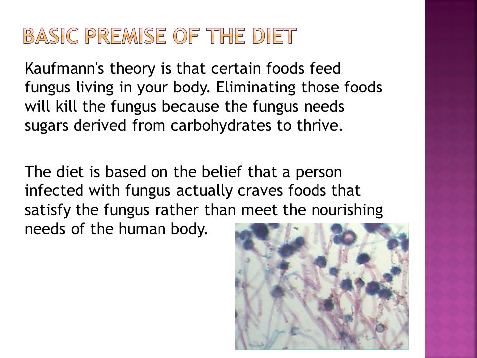 Kaufmann s theory is that certain foods feed fungus living in your body.