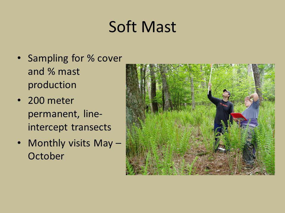 Sampling for % cover and % mast production 200 meter permanent, line- intercept transects Monthly visits May – October