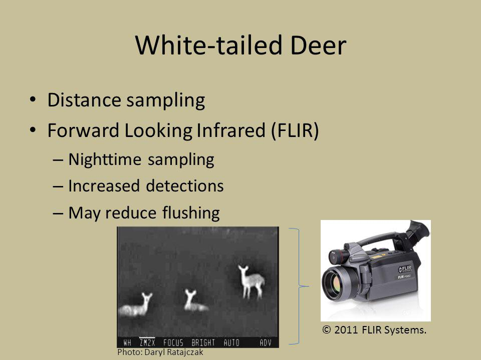 White-tailed Deer Distance sampling Forward Looking Infrared (FLIR) – Nighttime sampling – Increased detections – May reduce flushing © 2011 FLIR Systems.