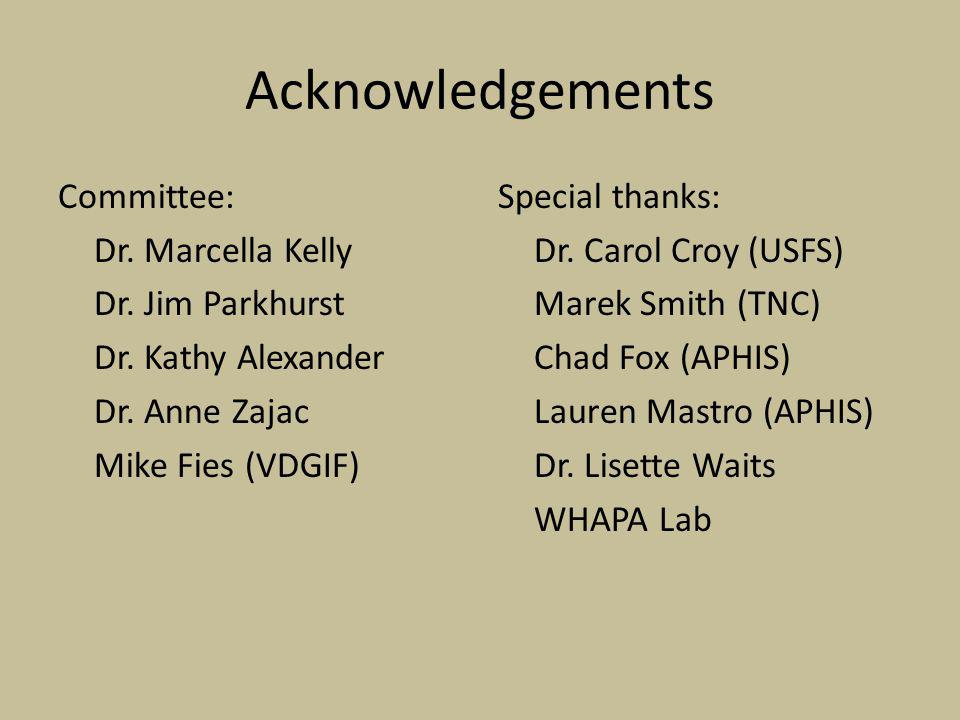 Acknowledgements Committee: Dr. Marcella Kelly Dr.