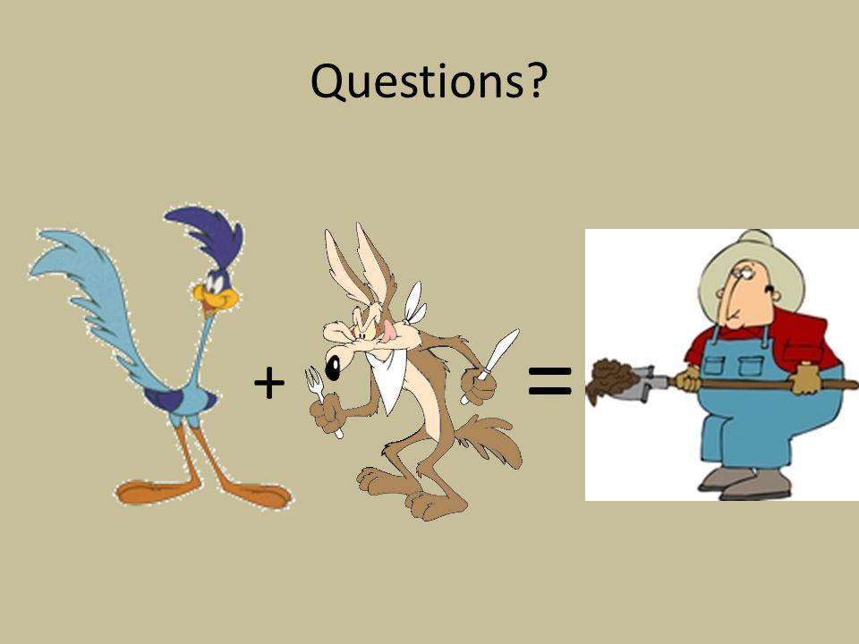 Questions + =