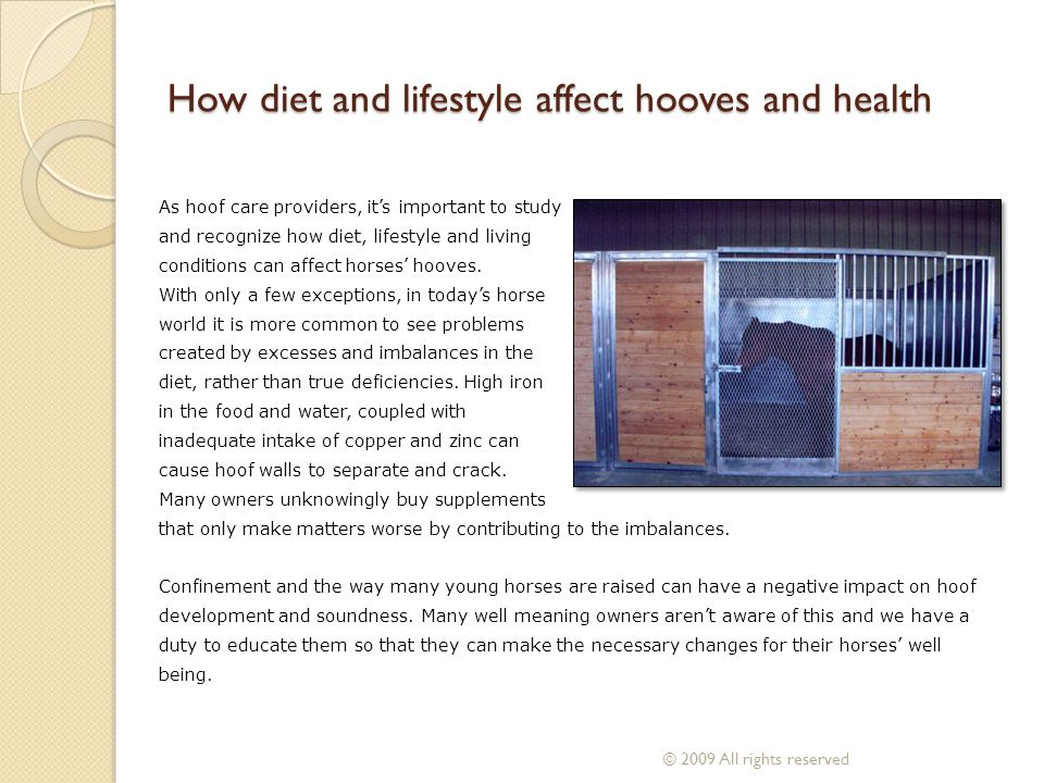 How diet and lifestyle affect hooves and health As hoof care providers, its important to study and recognize how diet, lifestyle and living conditions