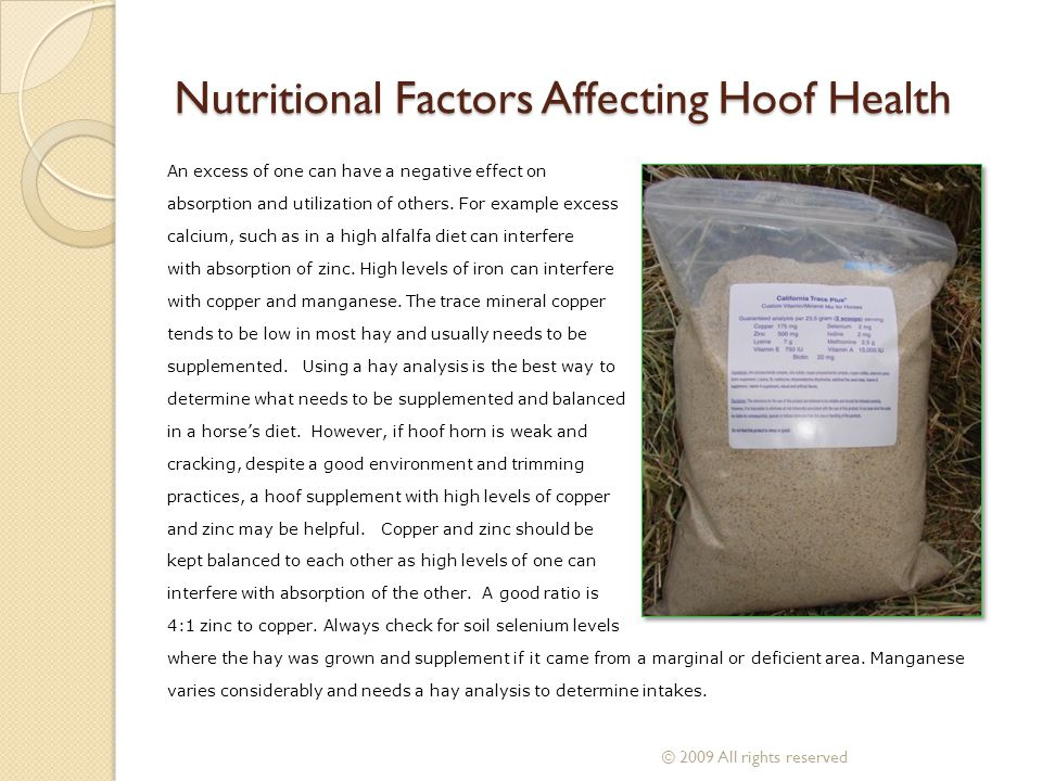 An excess of one can have a negative effect on absorption and utilization of others. For example excess calcium, such as in a high alfalfa diet can in