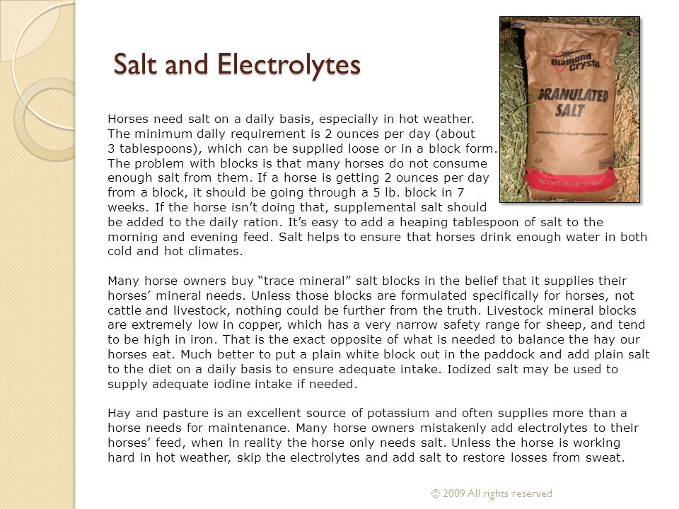 Salt and Electrolytes Horses need salt on a daily basis, especially in hot weather. The minimum daily requirement is 2 ounces per day (about 3 tablesp