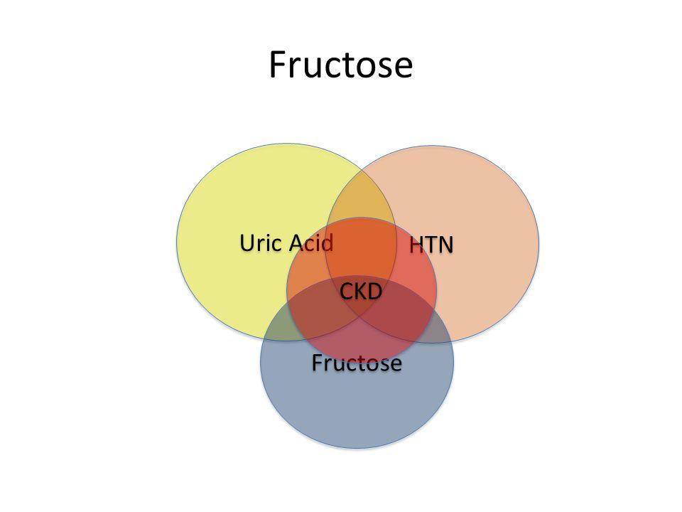 Fructose Uric Acid HTN Fructose CKD