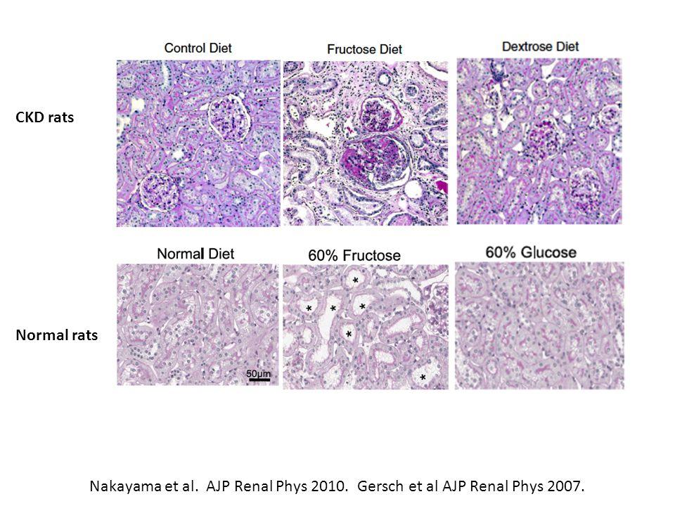 Nakayama et al. AJP Renal Phys 2010. Gersch et al AJP Renal Phys 2007. Normal rats CKD rats