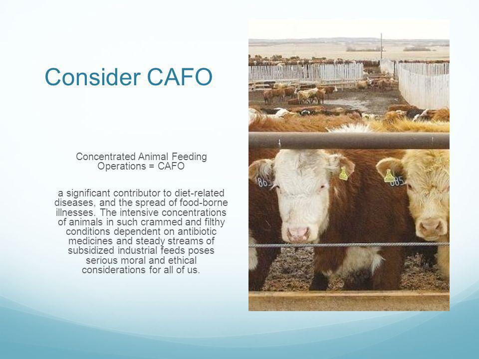 Consider CAFO Concentrated Animal Feeding Operations = CAFO a significant contributor to diet-related diseases, and the spread of food-borne illnesses.