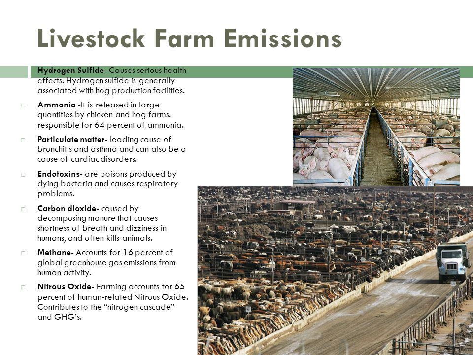 Livestock Farm Emissions Hydrogen Sulfide- Causes serious health effects.
