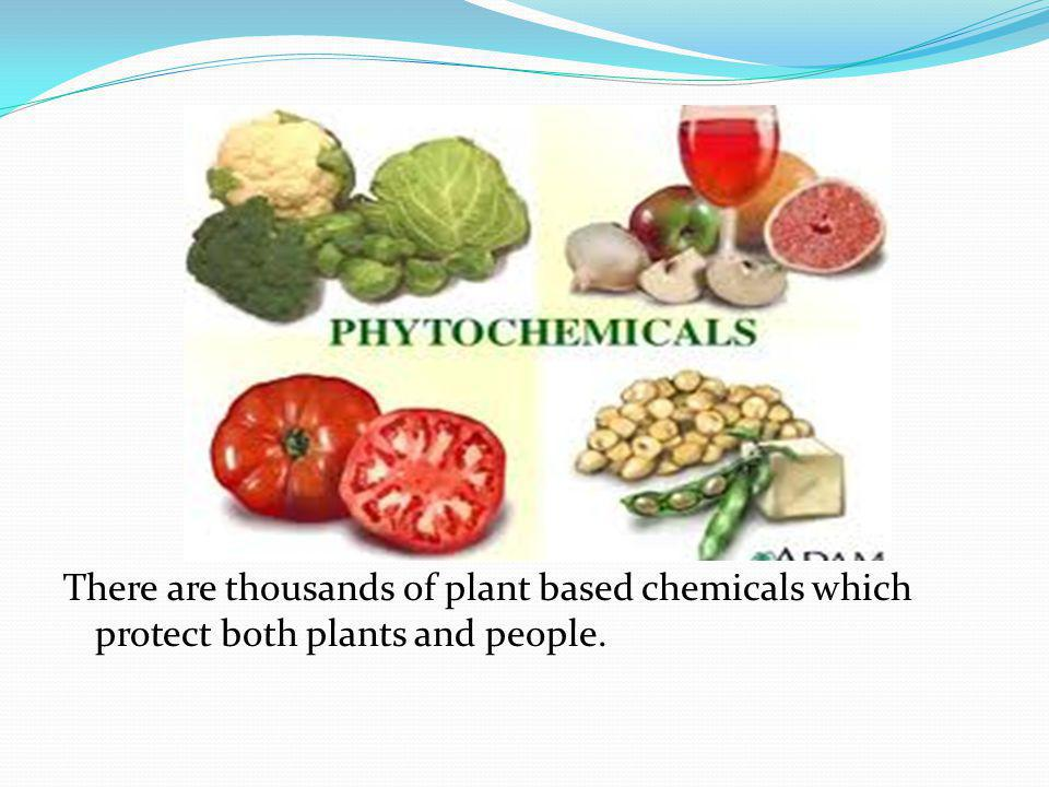 There are thousands of plant based chemicals which protect both plants and people.