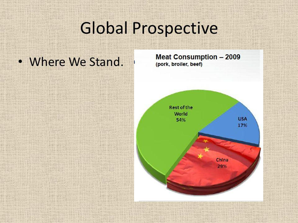 Global Prospective Where We Stand.