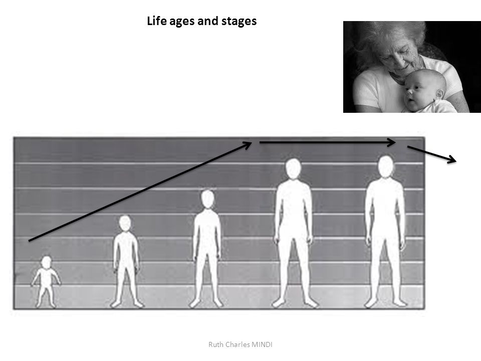 Life ages and stages Ruth Charles MINDI