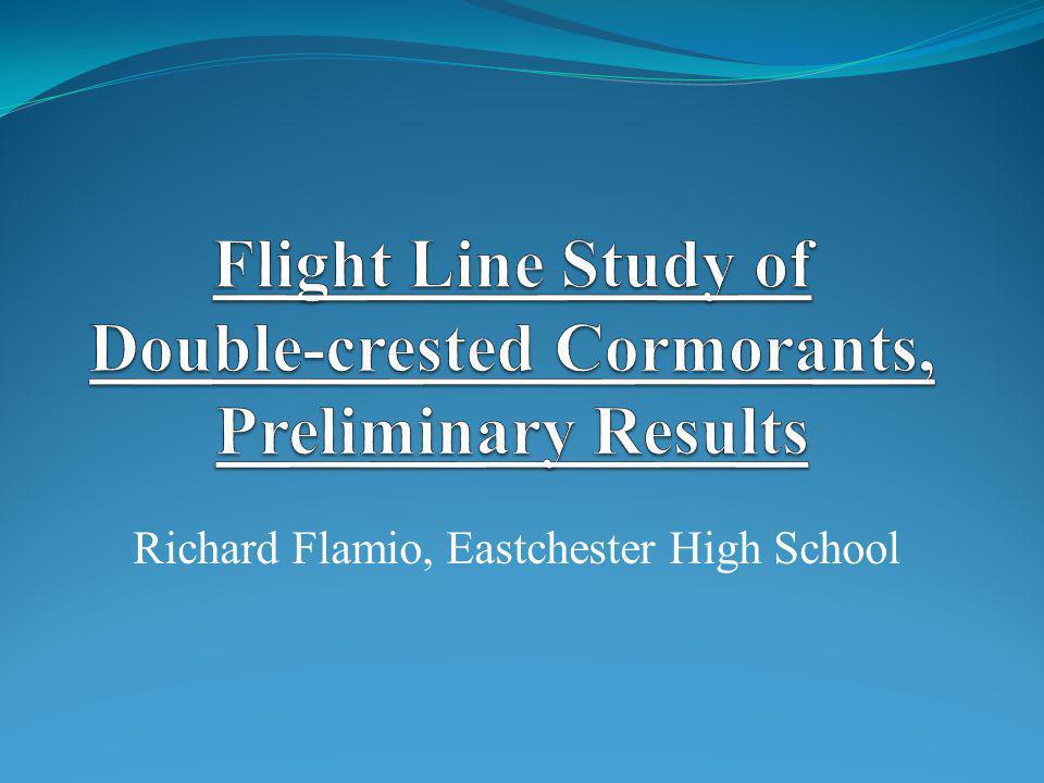 Richard Flamio, Eastchester High School