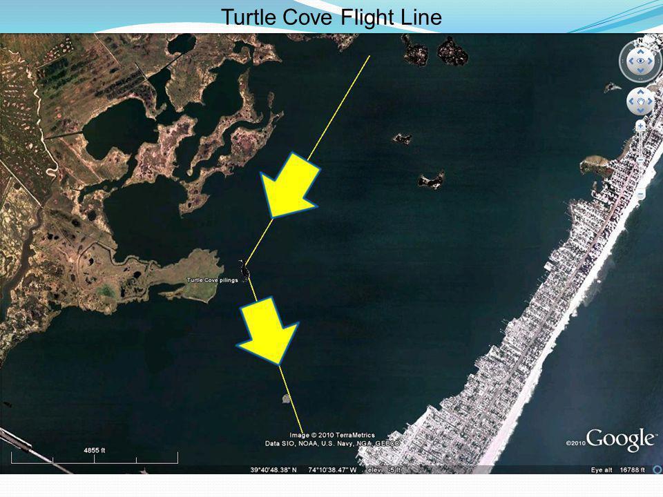 Turtle Cove Flight Line