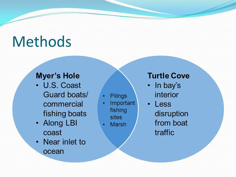 Methods Myers Hole U.S. Coast Guard boats/ commercial fishing boats Along LBI coast Near inlet to ocean Turtle Cove In bays interior Less disruption f