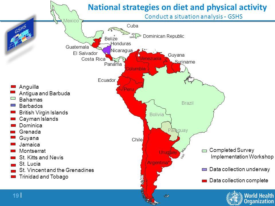19 | Brazil Peru Chile Suriname Guatemala Costa Rica Completed Survey Implementation Workshop Data collection underway Venezuela Data collection compl