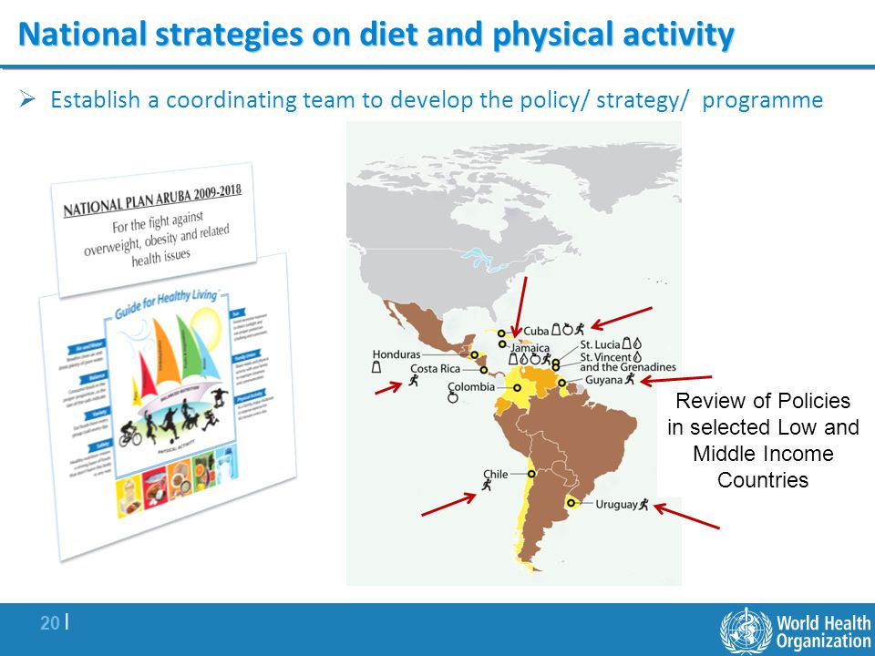 20 | National strategies on diet and physical activity Establish a coordinating team to develop the policy/ strategy/ programme Review of Policies in selected Low and Middle Income Countries