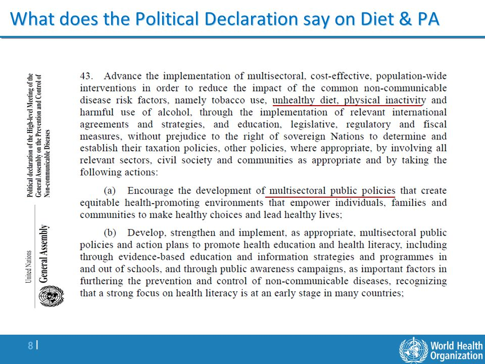 8 |8 | What does the Political Declaration say on Diet & PA